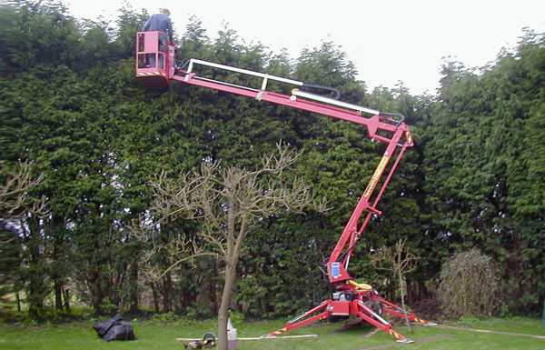 Robingate landscapes hedge cutting for Gardening tools dublin